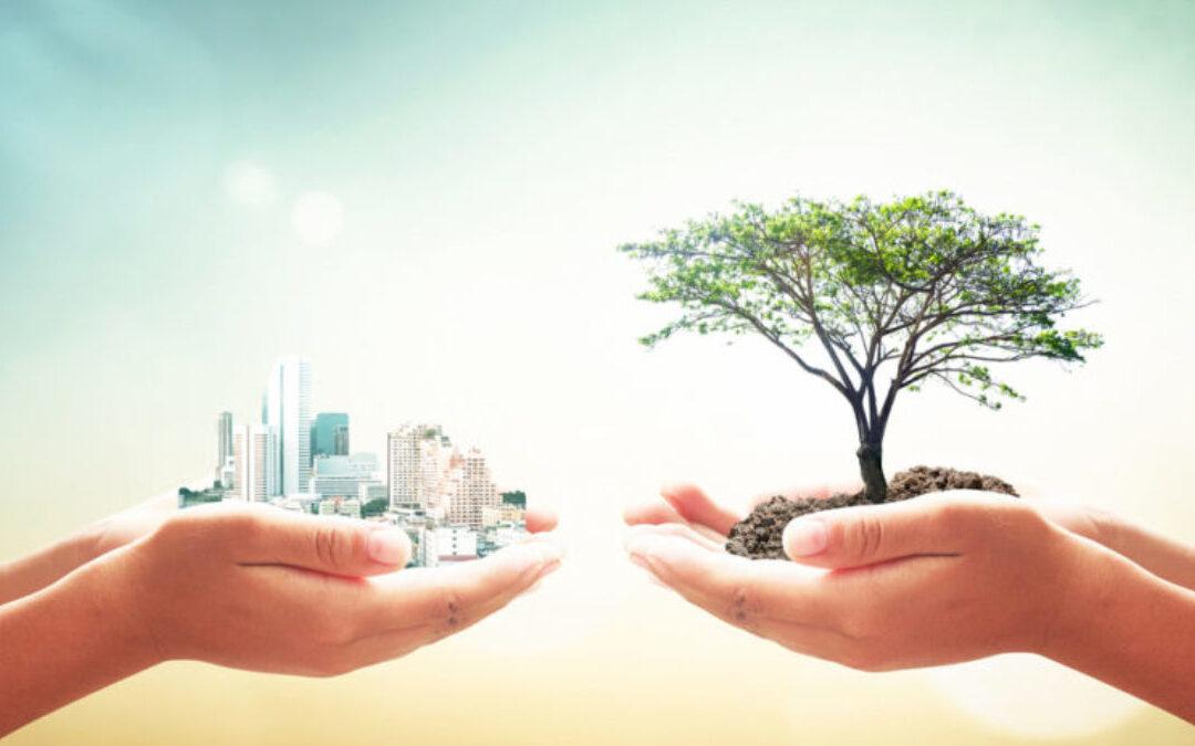 Filantropía y Sostenibilidad